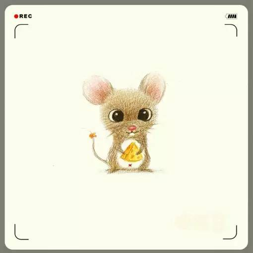 教你画一群呆萌的小动物,好可爱