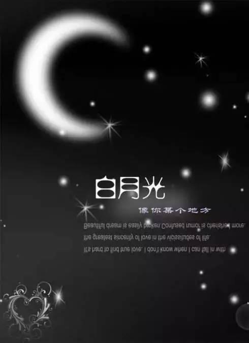 白月光图片