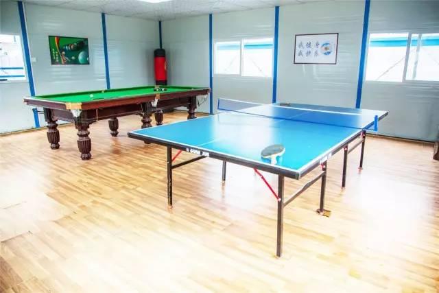 室内乒乓球桌,台球桌图片