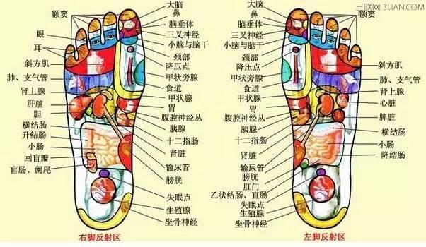 千百年前,我们的祖先就使用脚部按摩的方法来达到治病和保健的目的.