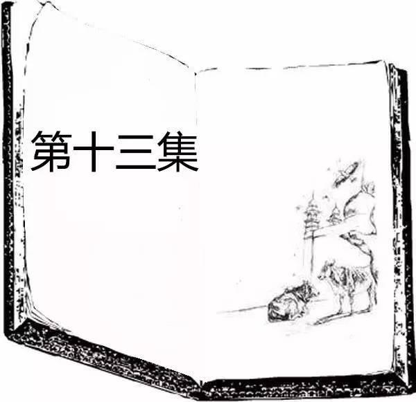 【一齐听】《我的动物朋友花颈鸽》第十三集 张齐