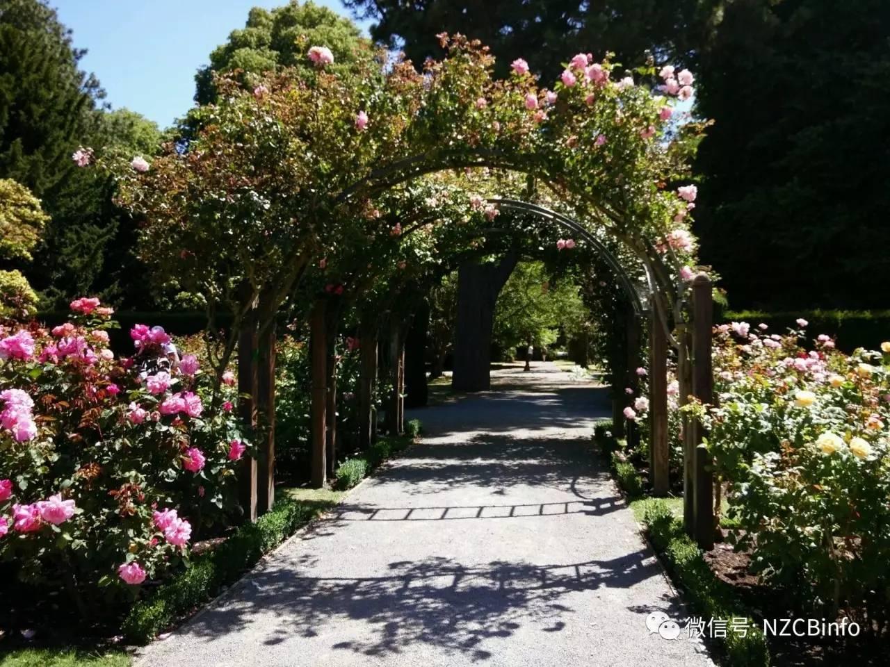 新西兰百科   基督城植物园christchurch botanic