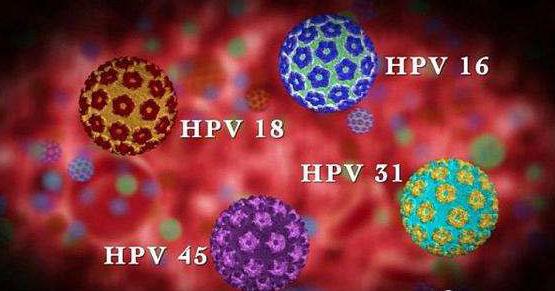 9价HPV疫苗是否有必要接种?最近一直在考虑要不要