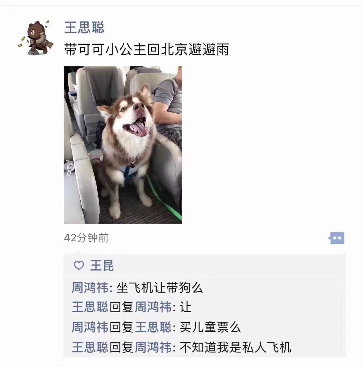 前两天,这条狗才因为坐私人飞机回京避雨刷了一波热搜