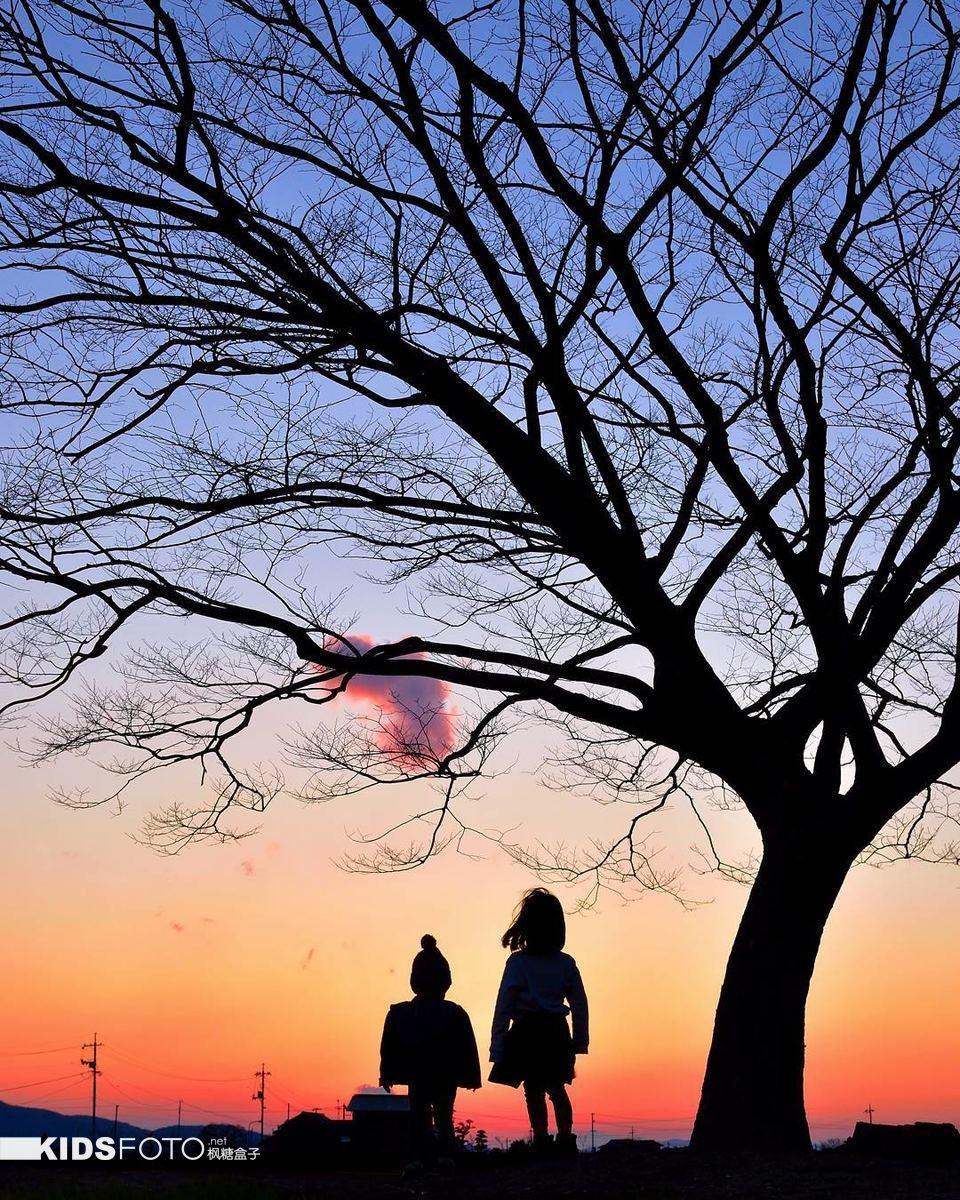 日本爸爸在天地间拍摄的姐弟小小背影,是世界上最美丽的风景