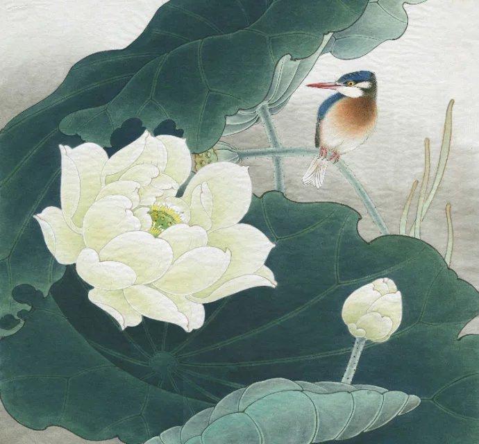 李晓明工笔白荷花画法 4
