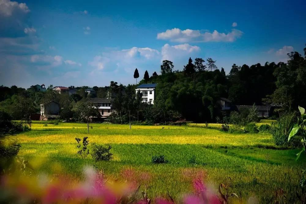 旅游 正文  摄影:李远华 详细坐标:武胜县各乡村旅游景点 中滩乡长滩