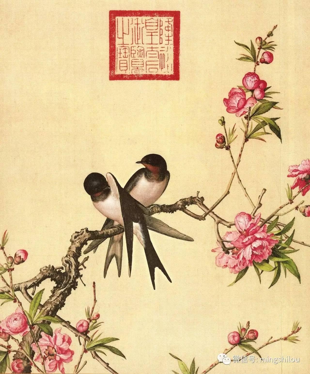 这些绝美的工笔画花鸟是意大利画师郎世宁在清朝画的 搜狐文化 搜狐网