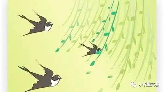 燕子手绘漫画图片