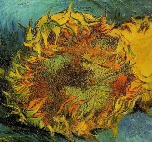文化 正文  梵高与他的向日葵  我这人很喜欢家乡的葵花,它实际上只是