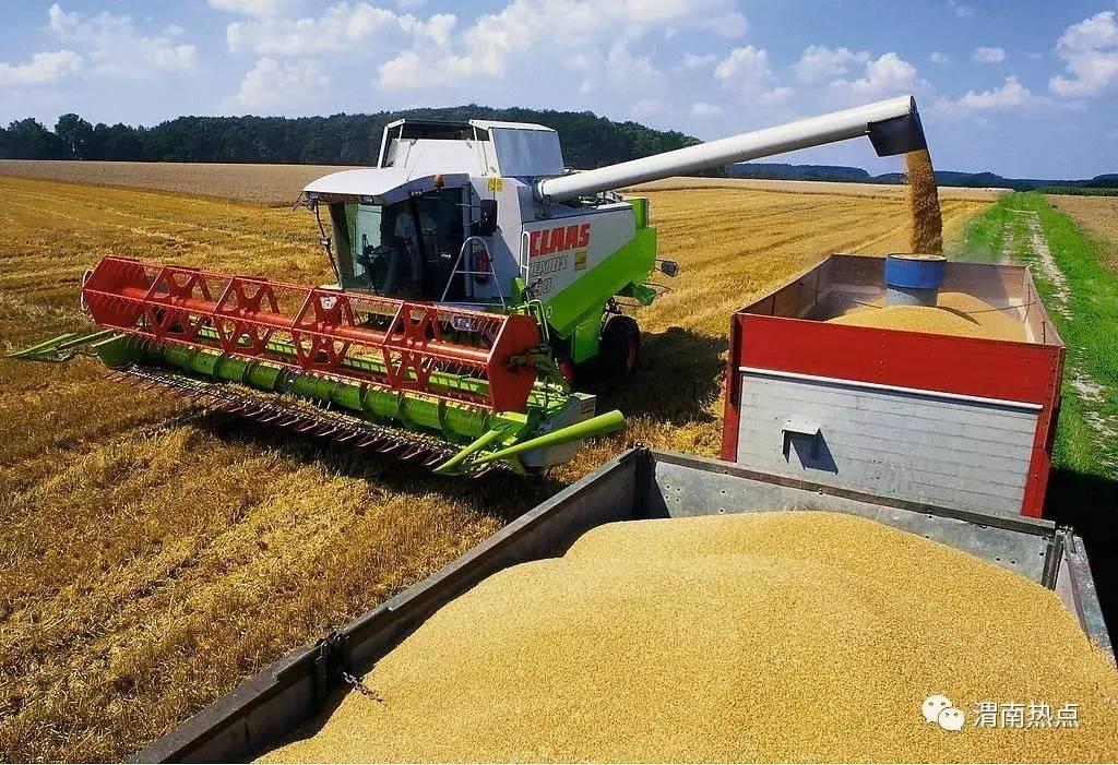 """富平被确定为全国""""优质粮食工程""""示范县图片"""