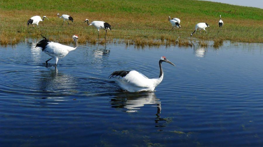 五大连池gdp_五大连池风景区图片