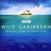 《野性加勒比》