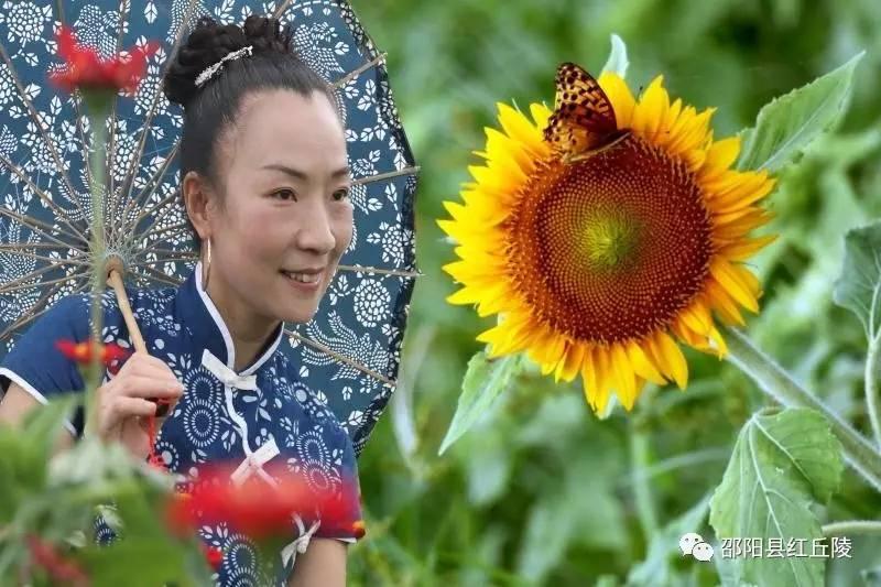 蓝印旗袍女迷恋泉井花海与蓝印旗袍的春天等作品专刊图片
