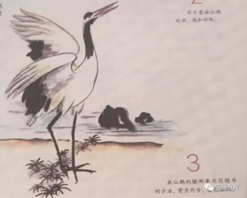 写意仙鹤画-怎样画丹顶鹤