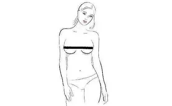 手绘胸部结构图