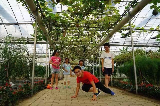 参观果蔬采摘区,儿童乐园区,动物园,火龙果主题馆等园区.