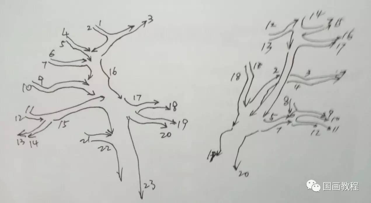 松树简笔画手绘画法