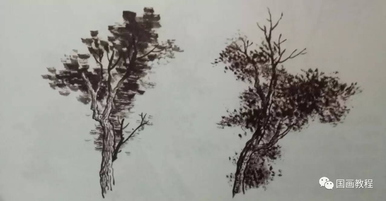 各种树的画法