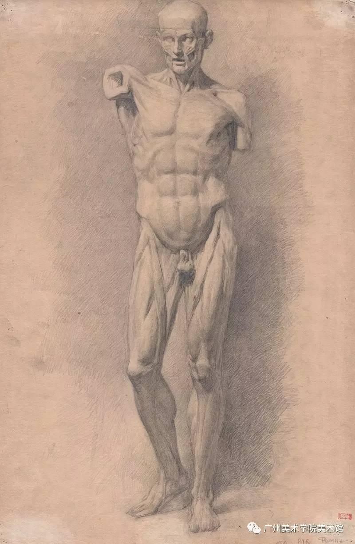 郭绍纲《石膏大卫头像》素描,66.5×49.5 cm,1950年代