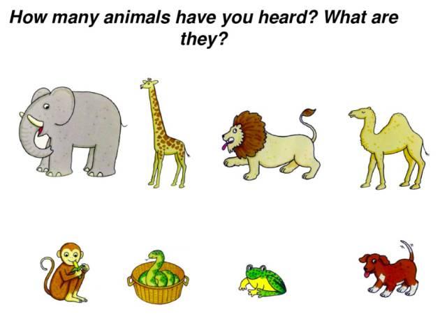 一本值得宝贝反复听的经典绘本 Dear zoo 这些动物都是怎么叫的