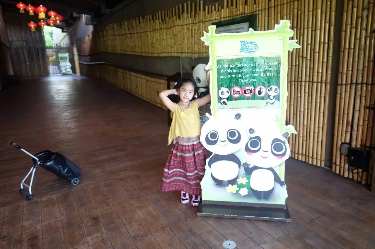带着女儿私奔新加坡,沉醉于一场奇幻动物园之旅(二) | 【河川生态园篇