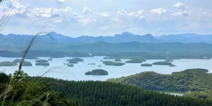 万万没想到的是,广东的千岛湖竟在台山.他就是