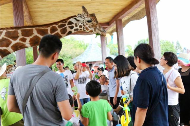 【夏日正确出游路线】一票畅游杭州野生动物世界冰雪动物城,水上乐园