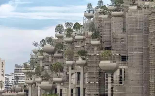 鬼才设计师托马斯,又发飙了,在魔都建了座巴比伦空中花园