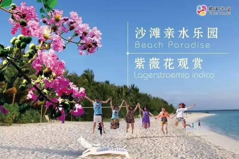 紫溪半岛沙滩亲水园周末免费开放