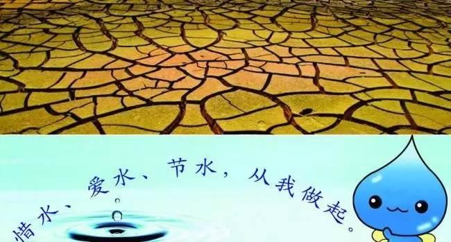 節約用水 從點滴做起