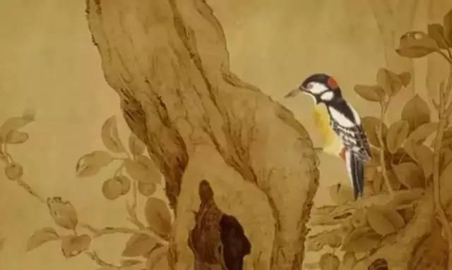3年手绘10093幅花鸟工笔画,古风动画《美丽的森林》让