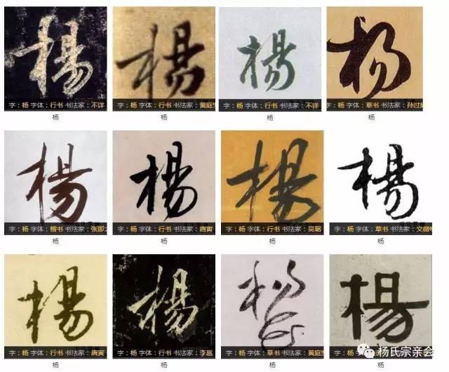 厉害了我的杨 杨字的100种写法 杨家人不容错过