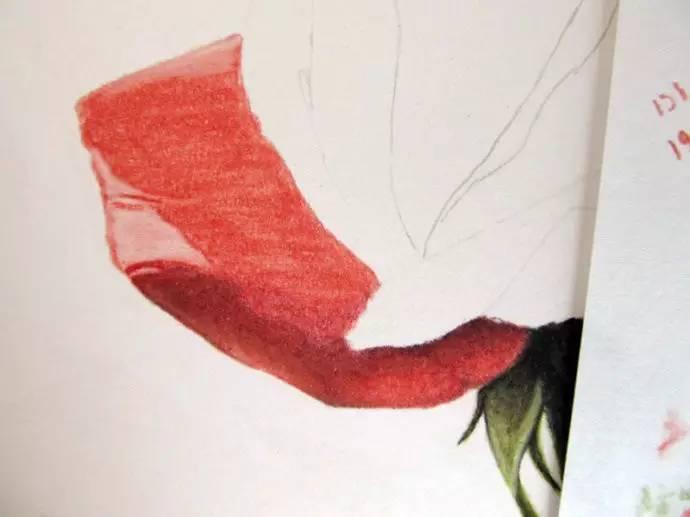 用铅笔画一朵红玫瑰,送给女朋友一份永不凋零的爱