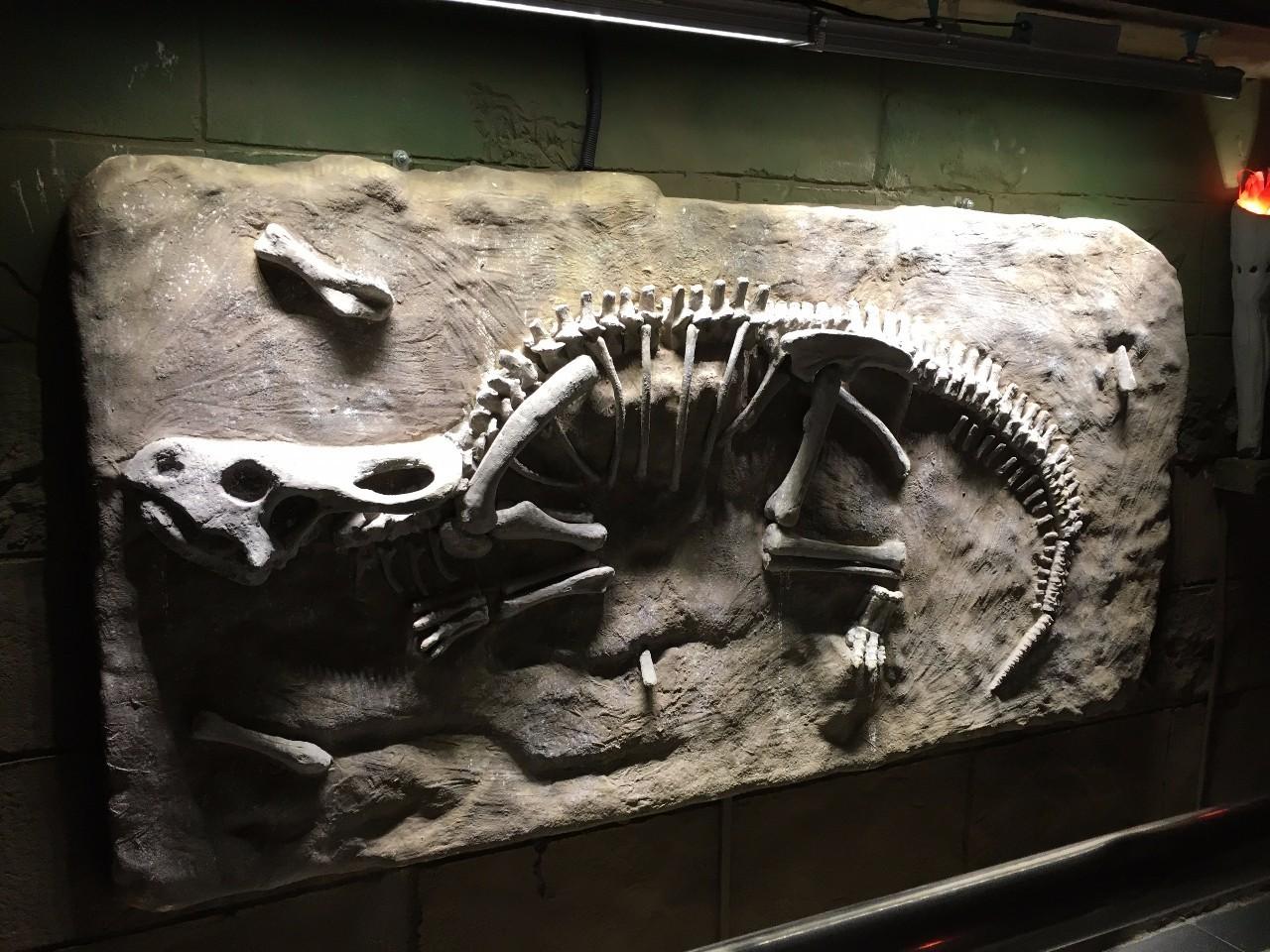 恐龙乐园 恐龙总动员 恐龙当家国语版 小恐龙丛林历险记
