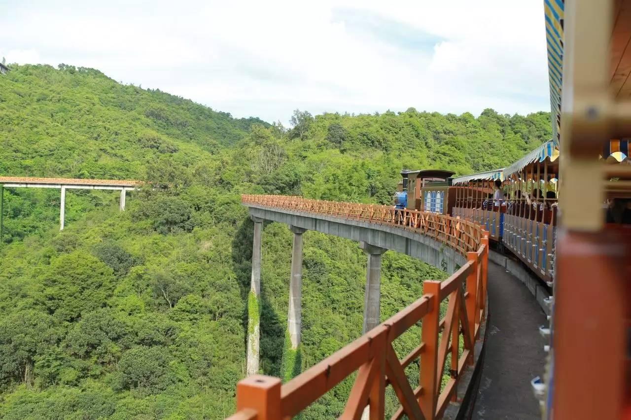 深圳竟有这样一个神秘度假基地!森林小火车,丛林,欧洲图片