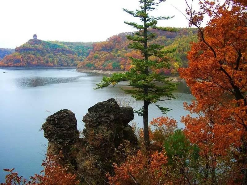 翠枫山自然风景区由于地质地貌和气候环境特殊,自然森林覆盖率达97%