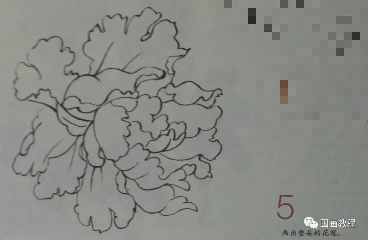 牡丹花的写意画法步骤