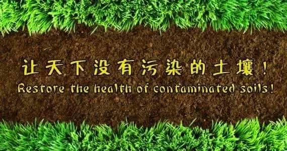 来源:中国生物肥世纪阿姆斯 2017-07-16         生物有机肥对土壤的5大作用   有机肥主要来源于植物和(或)动物,施于土壤以提供植物营养为其主要功能的含碳物料。经生物物质、动植物废弃物、植物残体加工而来,消除了其中的有毒有害物质,富含大量有益物质,包括:多种有机酸、肽类以及包括氮、磷、钾在内的丰富的营养元素。      提供养份全面   生物有机肥含有作物所需要的营养成份和各种有益微生物,而且养份比例全面,有利于作物吸收。相比于大肥,有机肥不会因多施而造成土壤某种营养元素大量增加,破坏土
