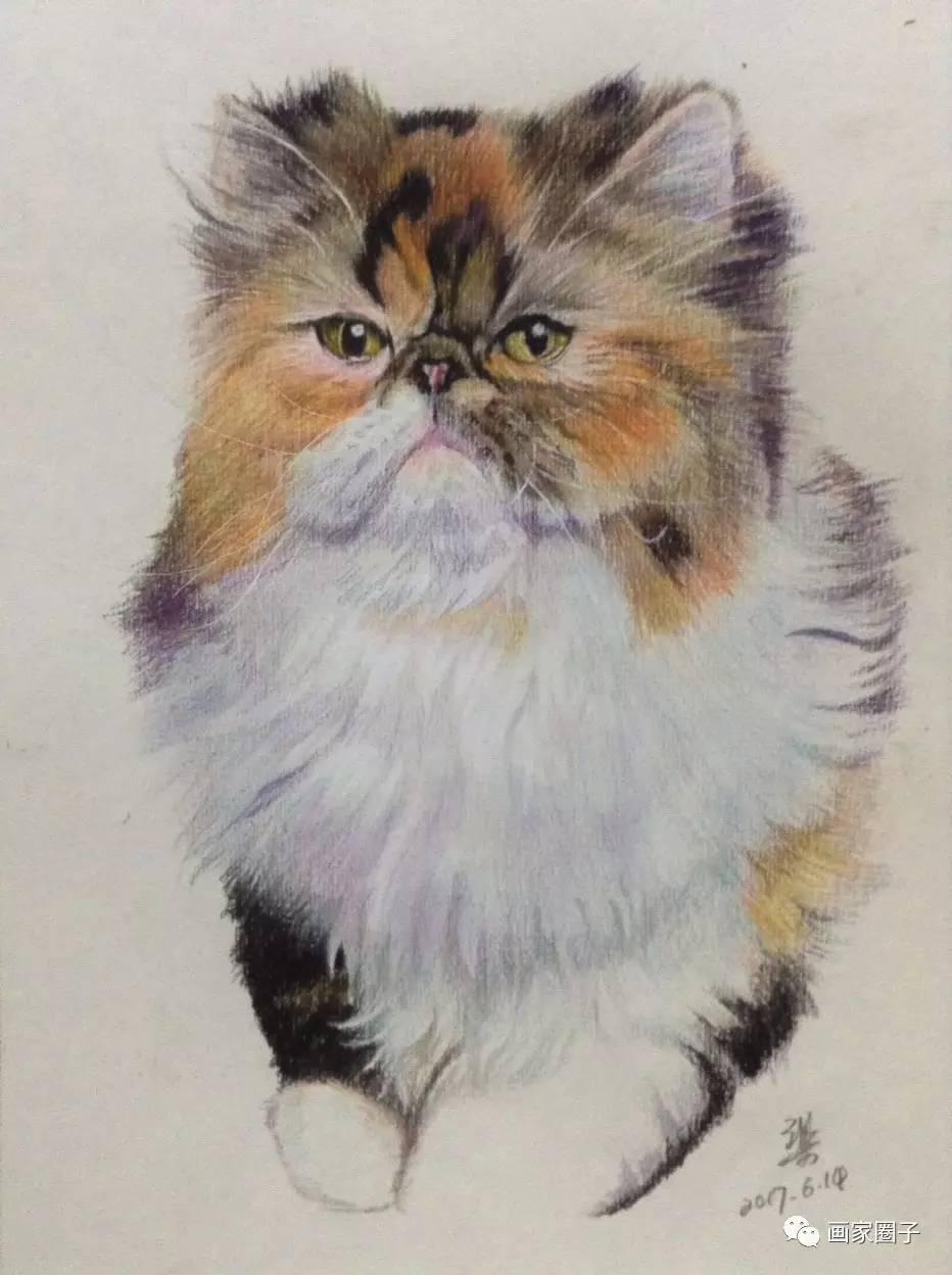 动物超写实素描画师