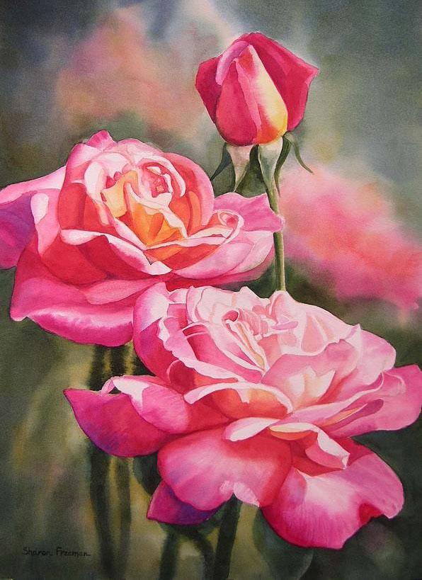 太美了 一组非常漂亮的手绘玫瑰花图片