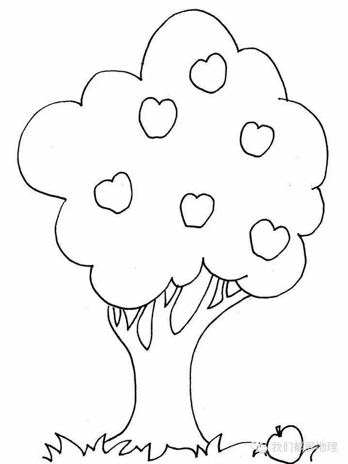 儿童秋天的果树简笔画 育才简笔画
