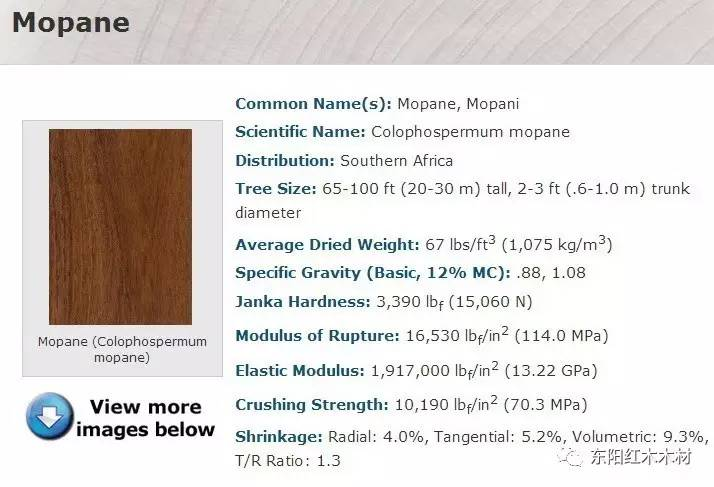 乐虎国际娱乐唯一官网分布于坦桑尼亚、莫桑比克等地