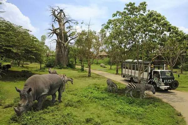 和数十种野生动物的自然栖息地,从亚洲的热带雨林一直到非洲大草原