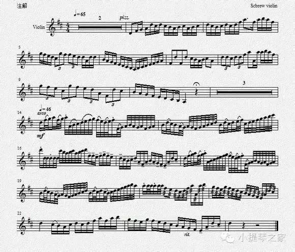 拨弦版卡农附小提琴乐谱
