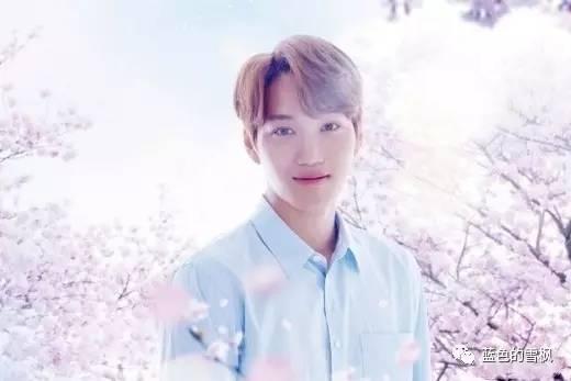 exo成员kai(金钟仁)主演日剧《春天来了》