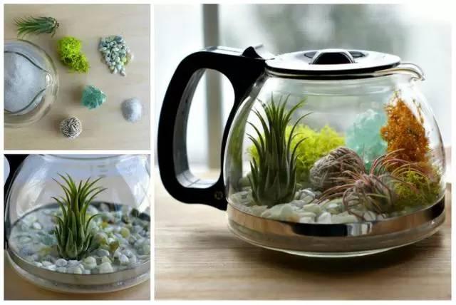 【旧物】废弃的杯子平底锅水壶厨房用具焕发新生命
