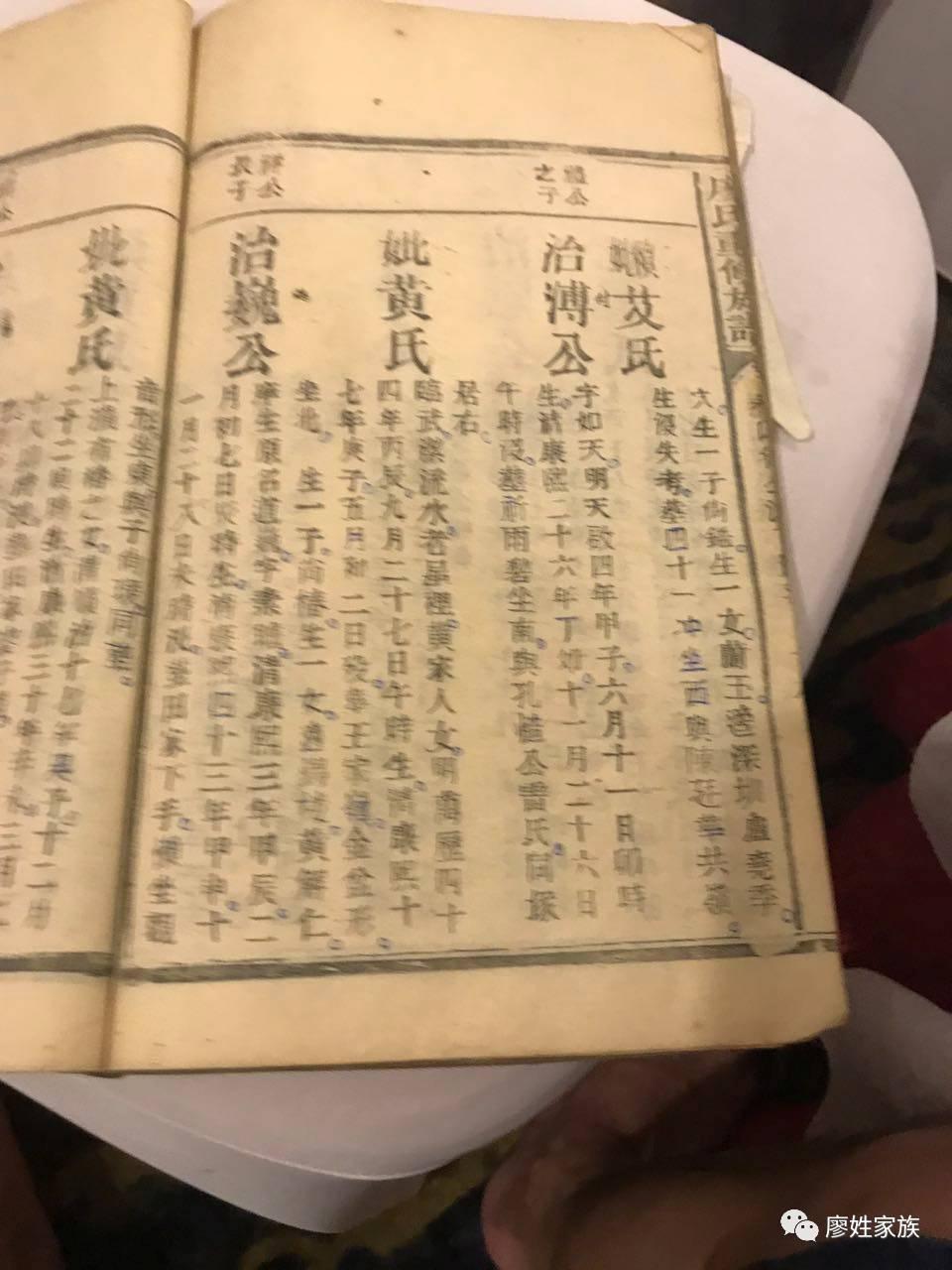 南郴州廖家湾 廖氏族谱图片