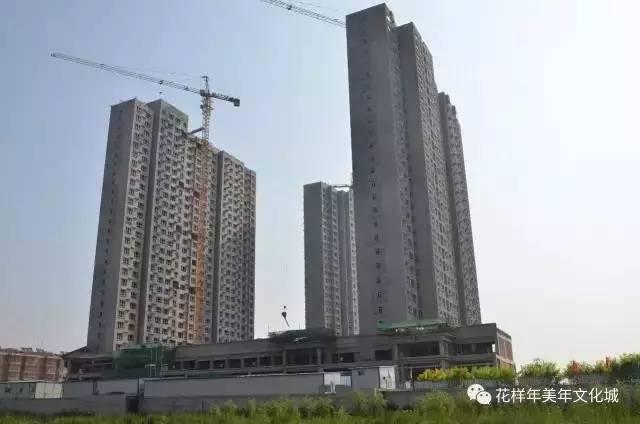 """泾川县紧盯""""五个增长点""""综合施策助推经济社会健康发展"""