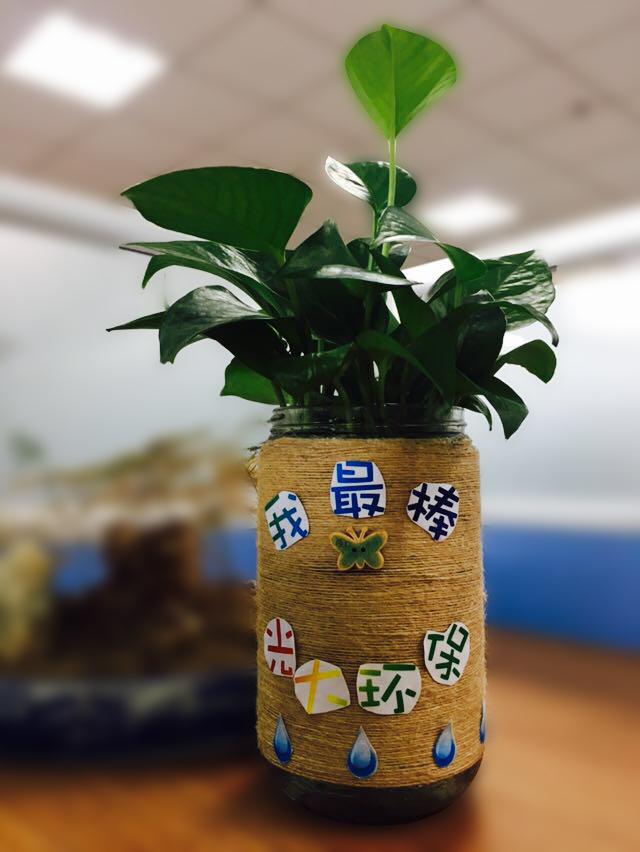 盆景 盆栽 瓶子 植物 640_852 竖版 竖屏图片
